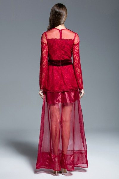 Tulle And Lace See-through Long Sleeve Prom Dress - $97 #CK543 ...