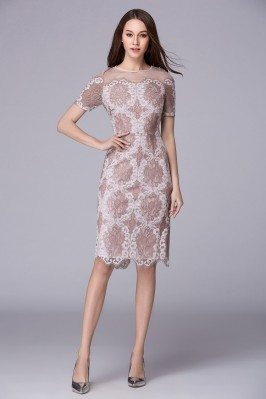 Unique Lace Short Sleeve Bodycon Dress
