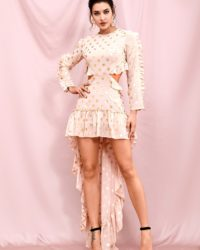 Pink High Low Cut Out Party Dress With Golden Dots Chiffon Dress LE98268