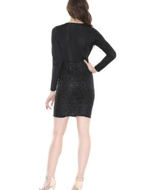 Black Sexy Deep Vneck Long Sleeve Bodycon Party Dress LE99827