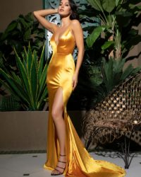 Sexy Deep Vneck Gold Backless Slit Bodycon Sleek Party Dress LE99047