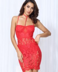 Sexy See-through Red Lace Bodycon Mini Club Party Dress LE99802