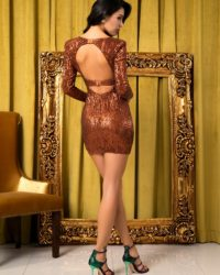 Deep Vneck Brown Sequins Slim Fit Party Dress Open Back With Sleeves LE98780