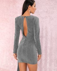 Grey Round Neck Ribbon Long Sleeve Mini Party Dress LE98839